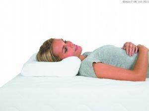 Harley Original Plus Pillow
